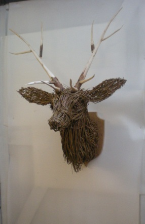 stag hunting trophy